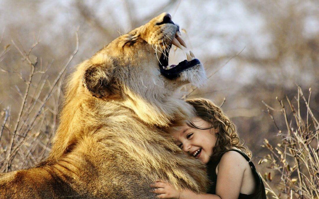 Contacte físic: 5 raóns per fer més abraçades